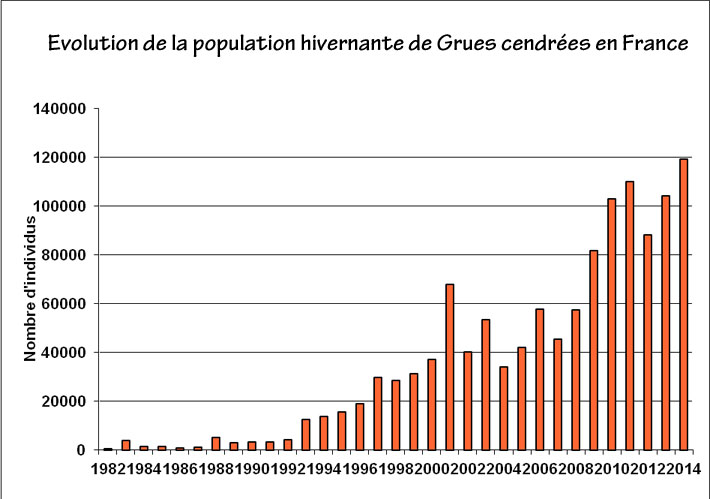 population grues hivernantes en france