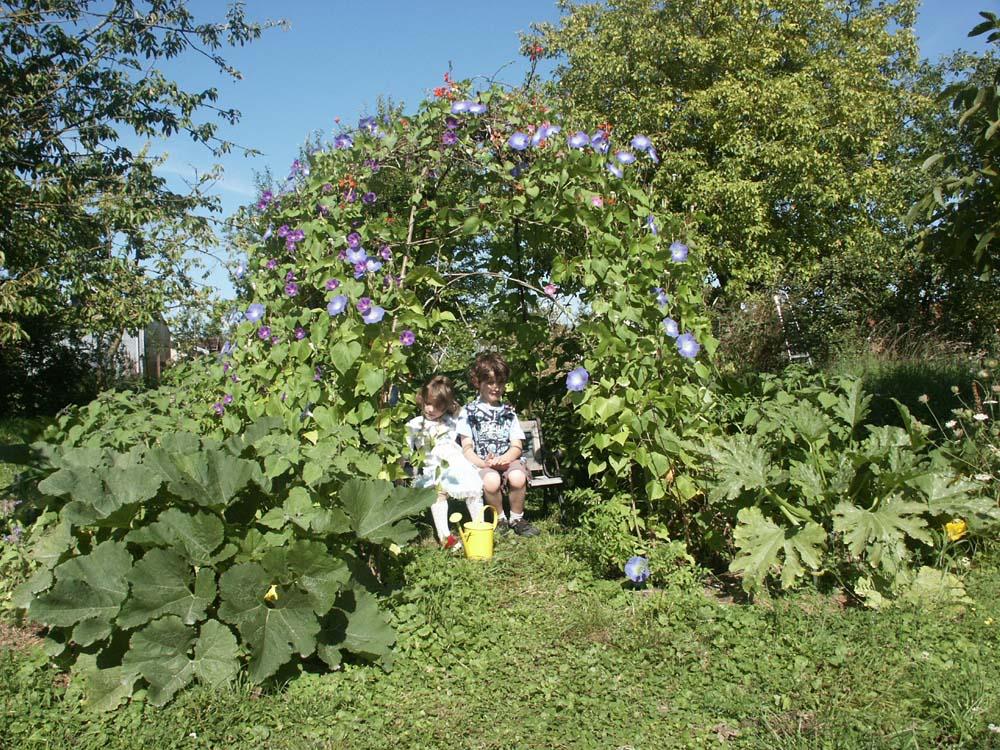 Le jardin de la cardamine for Jardin de la